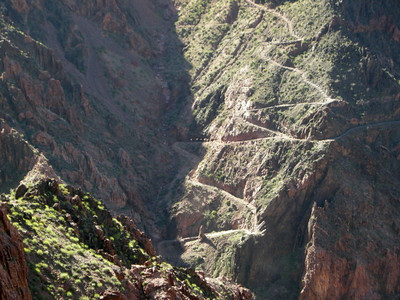 A pack train going up the South Kaibab