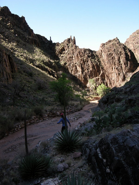 Heading down the canyon - remember to look up, there are great views around here!<br /> <br /> But also look down - those rocks can lead to nasty ankle twists if you're not careful