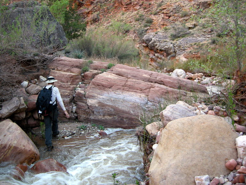 Dave heads back down the creek - feet still dry?
