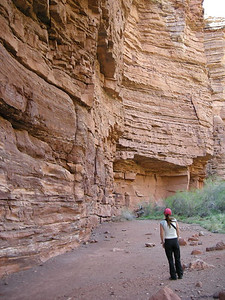 Paige takes in the tall canyon walls