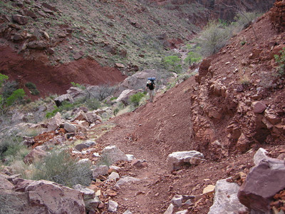 Today's hike takes us back to Bright Angel/Phantom ranch  But first we have to climb out of clear creek