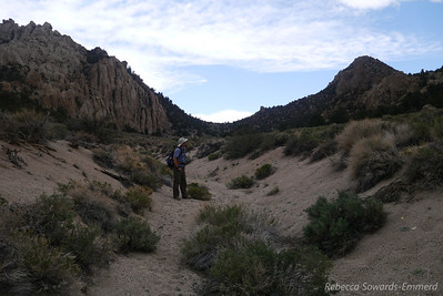 David along the 'road'. The peak is the point on the right - rocky and steep. We'll head to the saddle in front of us and figure out the route from there.