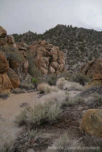 Heading down. We found a delightful little canyon on the side of the peak that reminded us of the Alabama Hills.