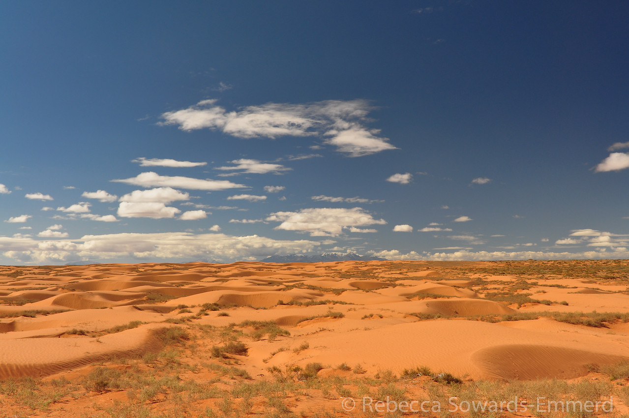 Beautiful sand dunes on the drive to the Horseshoe District.