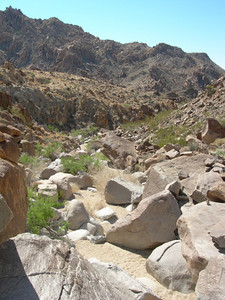 This was the terrain for 90% of the hike.