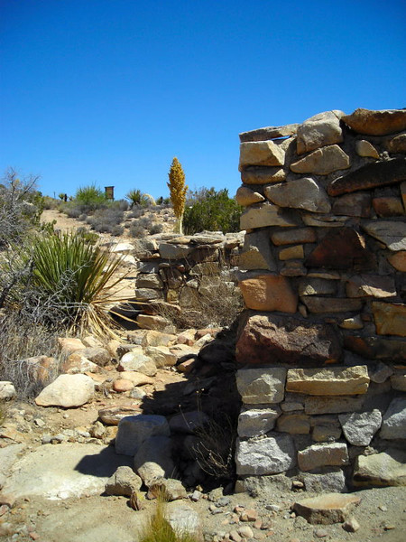 Back at the Desert Queen mine - the surveyor's cabin ruins.
