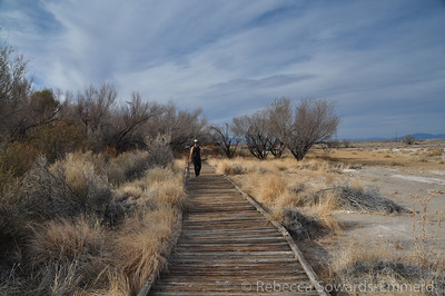 Walking the boardwalk by the visitor center.