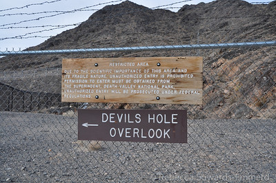 We headed out to Devil's hole.