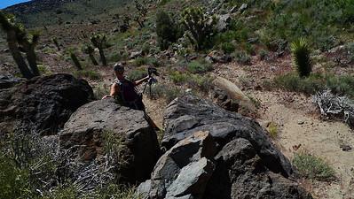 Sooz and a petroglyph rock