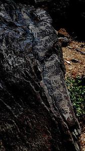 Petroglyphs in Centennial Canyon. Bad light midday, but I still took some photos.