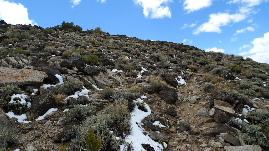 Following it to the summit. Snow is mostly gone.