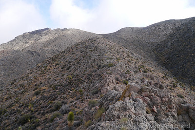 The summit is the rocky outcrop on the left.