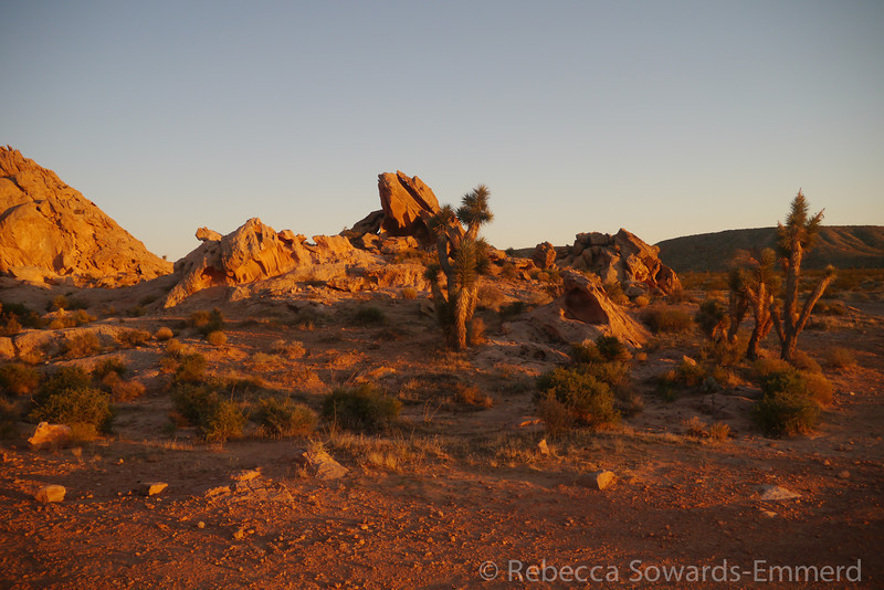 There are some beautiful red rock piles in the Gold Butte area and we found a nice campsite against one just before dark.