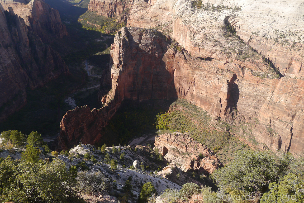 Looking down on Zion Canyon