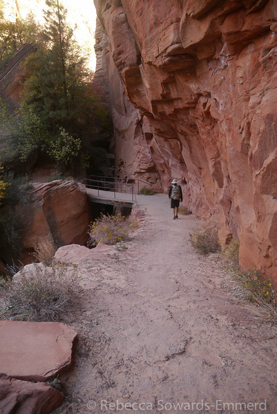 Trail and bridge through the canyon