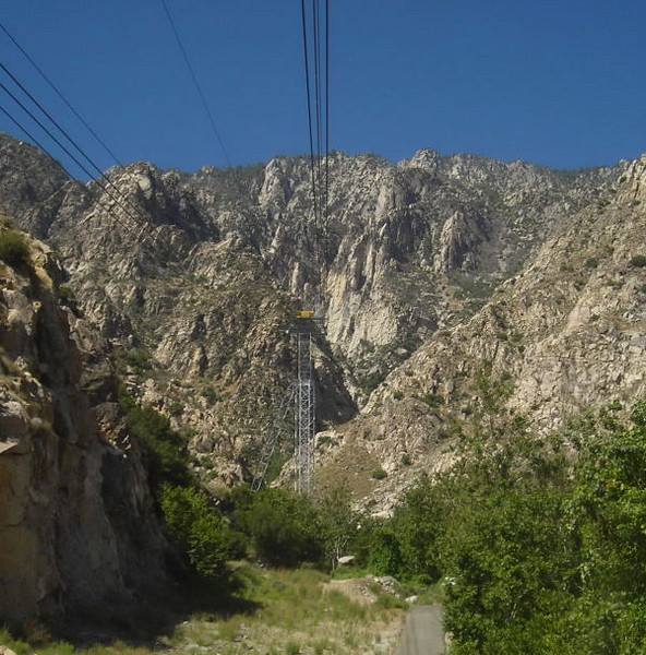 Looking up the tram route