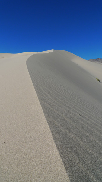 Unspoiled dunes. At least until we came along.