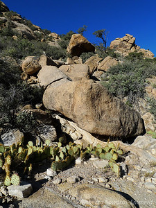 Watch where you step! Rock hopping is fun until you jump over one into a pile of beavertail cactus!