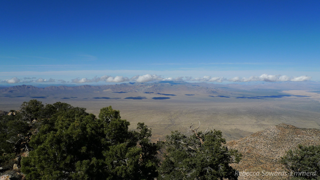 Looking north across Ivanpah Valley (towards I15)