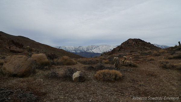 Southern Sierra and distinct snow line