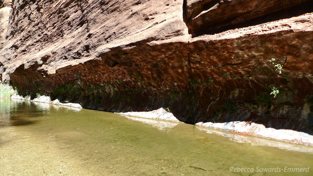 Sun and water reflection on the undercut red rock.