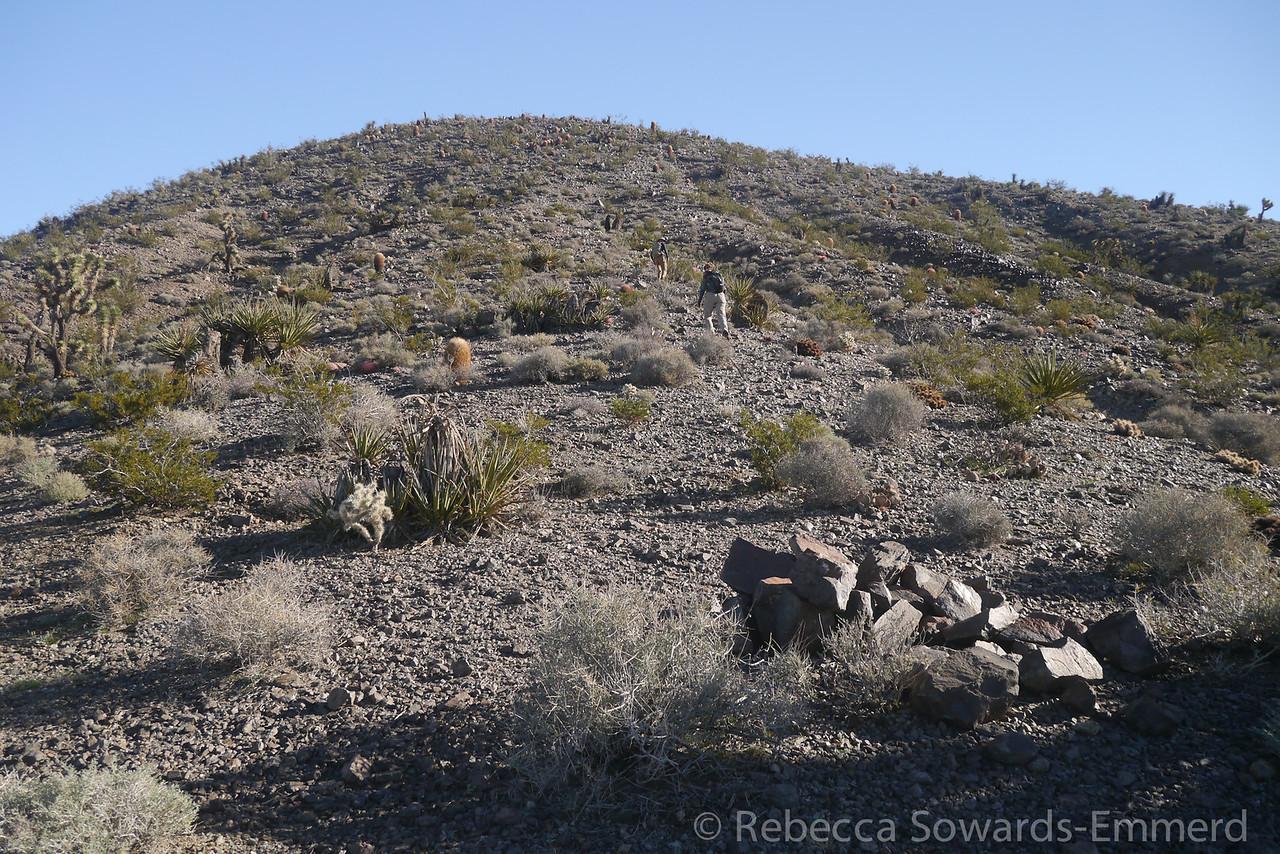 Many rock piles around the area.