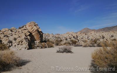 Sheep Corral, Mojave National Preserve