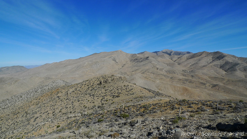Looking back towards Potosi Mountain