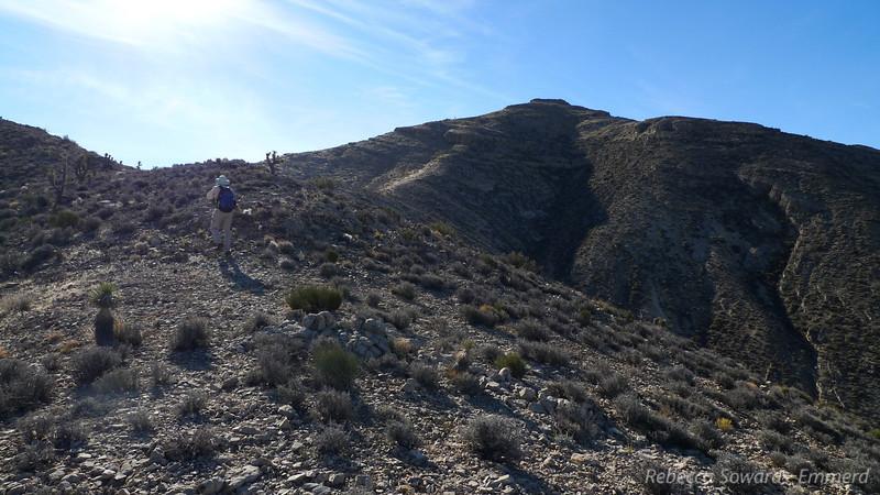 David heads up the ridge.