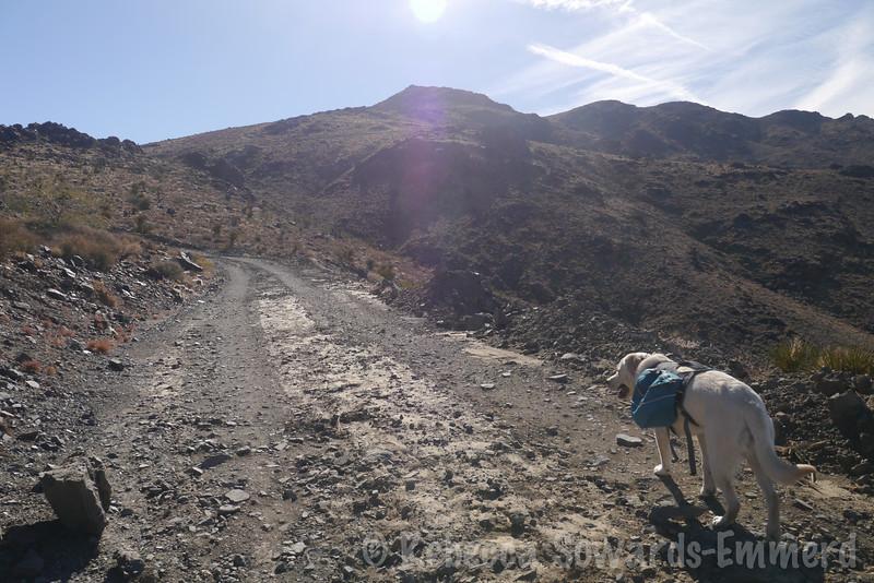 Climbing up Ord.