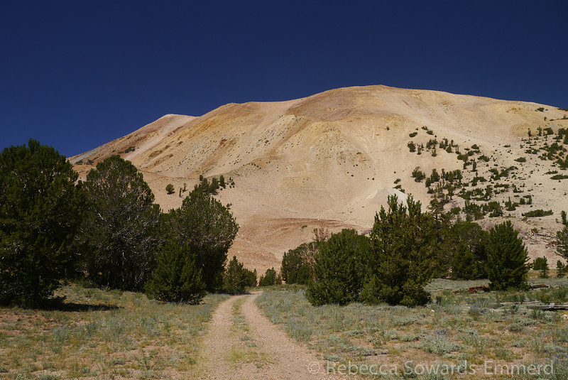 The slopes of wheeler peak from Boulder Flat. The summit is not in view from here.