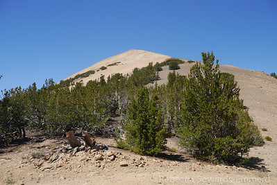 A false summit of wheeler is above us, but we head around to the southwest end of the peak to find a place to park.
