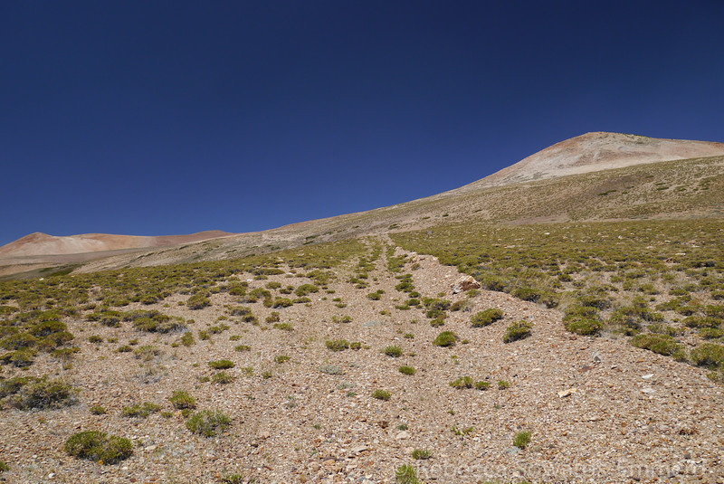 Following an old road across the sweetwaters. Approximately 11,300 ft.