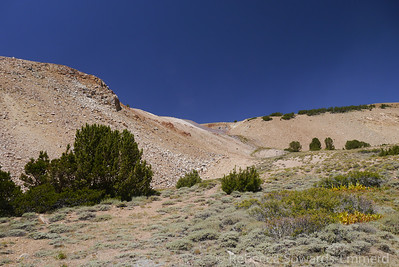 Then we hoofed it up that slope to meet another road that we could follow to the summits of patterson and wheeler.