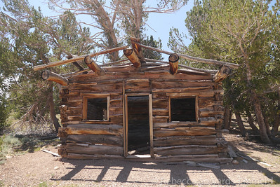Another sweet cabin. Somewhat of a fixer upper.