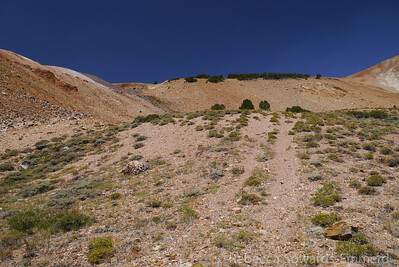Found the faint track of an old road to follow for a short distance.