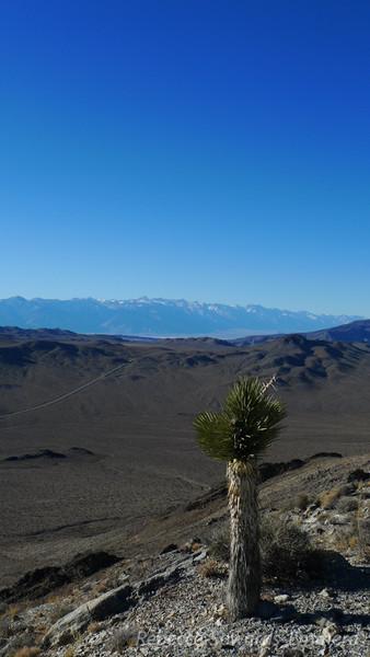 Ophir Peak view towards the sierra