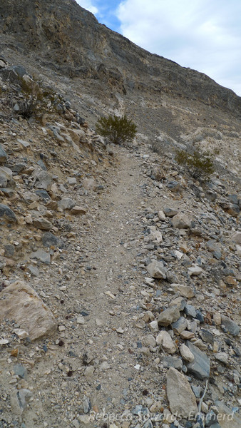 This trail was in better condition than most sierra trails I've been on and it's at least 100 years old and not been maintained.