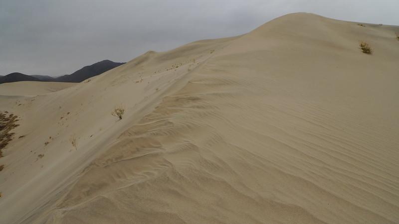 Hidden Dunes erosion