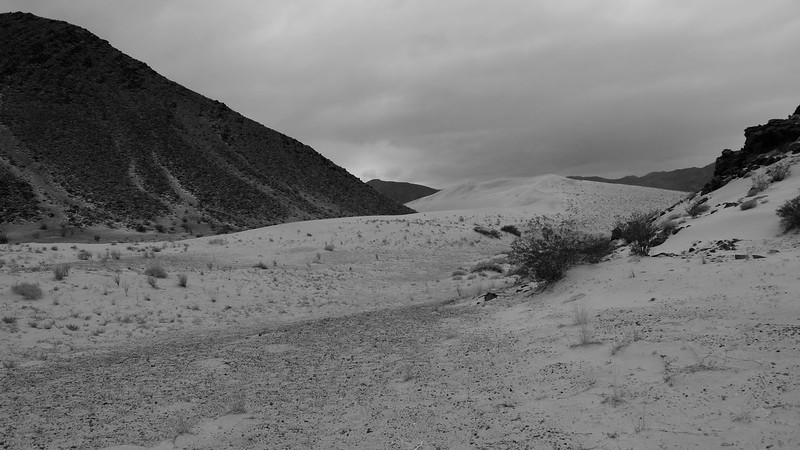 Hidden Dunes. I took a lot of black and white photos since the light was so flat and the colors so neutral.