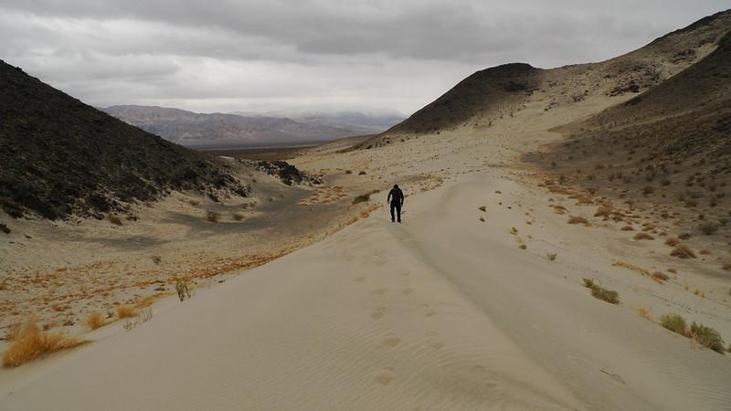 Hidden Dunes: leaving fresh tracks