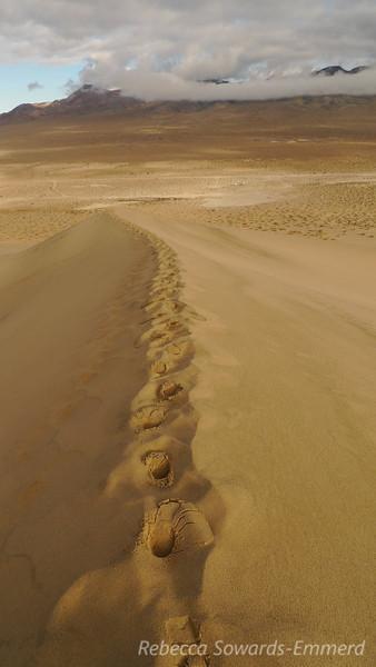 Wet fresh footprints.