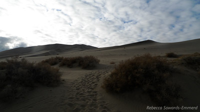 Heading up the dunes