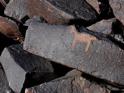 A sheep. Not many human or animal figures here, most of the cow cove petroglyphs are abstract.