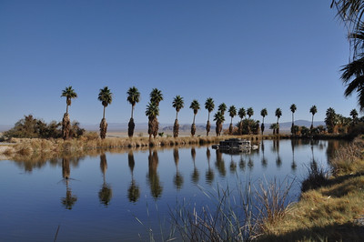 The pool at the Zzyzx resort