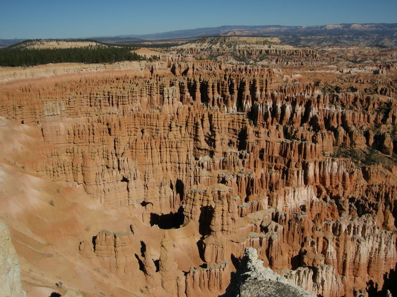 """Silent City""<br /> <br /> A tight cluster of hoodoos in the amphitheater"