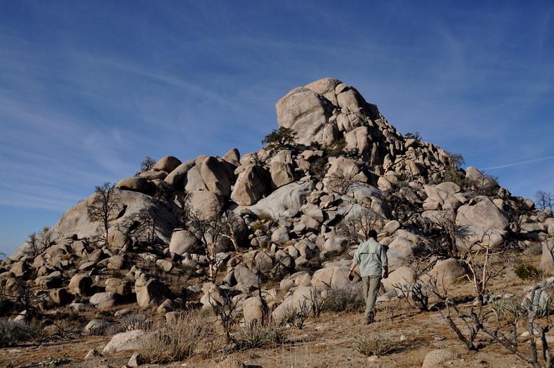 The rocks here look more like they belong in Joshua Tree