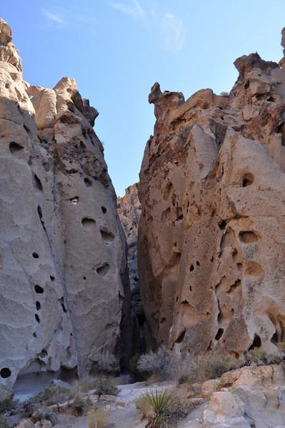 Holey walls