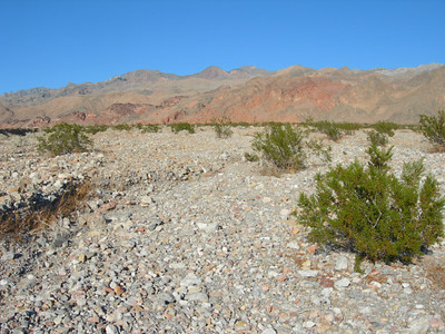 The alluvial fan approach to Red Wall Canyon  (Canyon is at right side of photo where red meets brown)