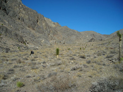 We finish looking for fossils and head up canyon.